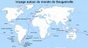 Le tour du monde de Bougainville